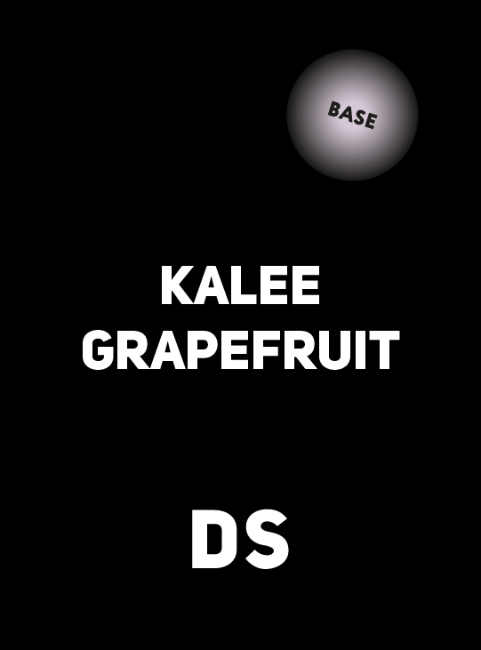 Аксессуар DS BASE KALEE GRAPEFRUIT 250