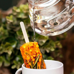 Чай *Облепиха с розмарином* замороженный / 50 гр