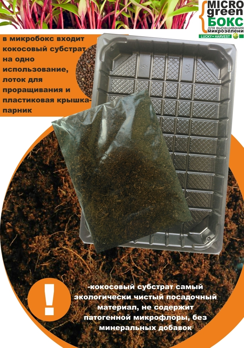 MICROGREEN BOX    (18 см  X  13 см) ТМ  LUCKY HARVEST