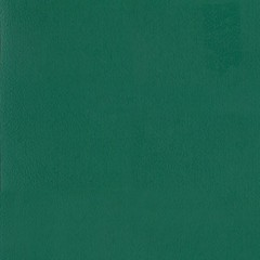 Линолеум спортивный Tarkett Omnisports Excel Forest Green 2x20,5 м