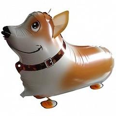 "Ходячий шар ""Собака Корги"""