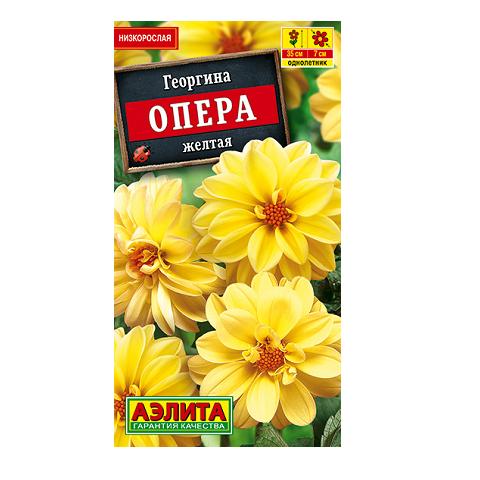 Георгина Опера желтая (Аэлита)