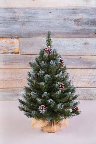 Искусственная елка Женева 60 см в мешочке заснеженная (с шишками)