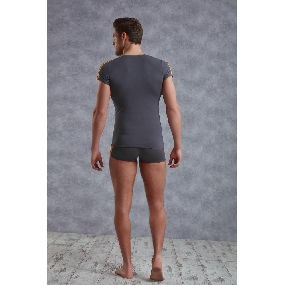 Мужская футболка темно-серая Doreanse 2544