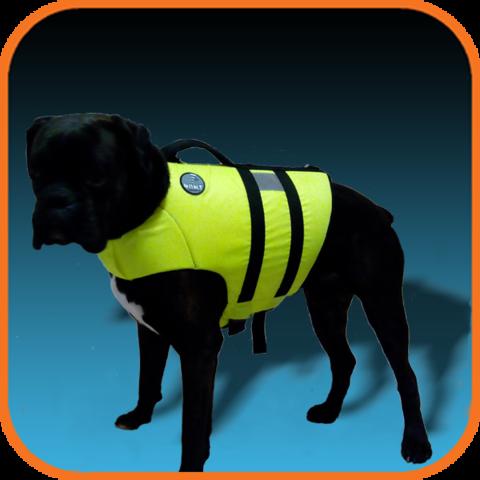Спасательный жилет для собаки