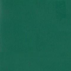 Линолеум спортивный Tarkett Omnisports Reference Forest Green 2x20,5 м