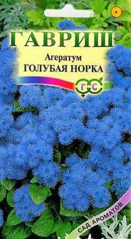 Агератум Голубая норка 0,1г Гавриш