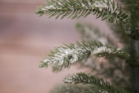 Искусственная елка Чемберлен 60 см в мешочке заснеженная