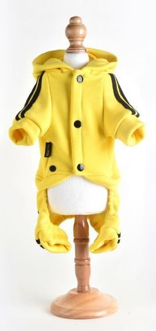 Royal Dog спортивный костюм желтый L