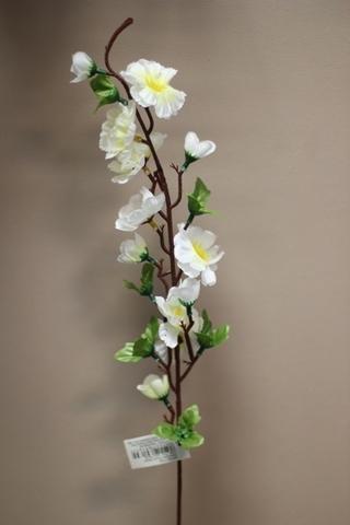 Ветка цветущая