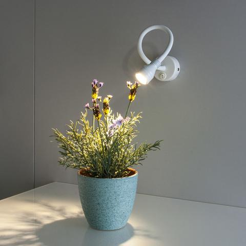 Светильник светодиодный Kord LED белый Elektrostandard без Пульта