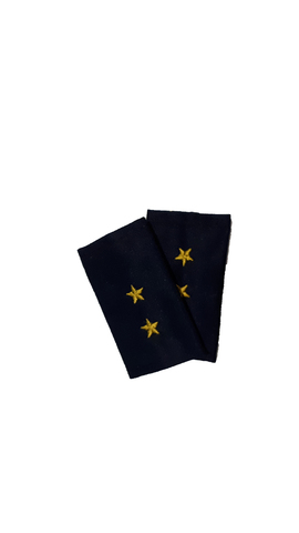 Фальшпогоны синие вышитые прапорщик (ГИБДД)