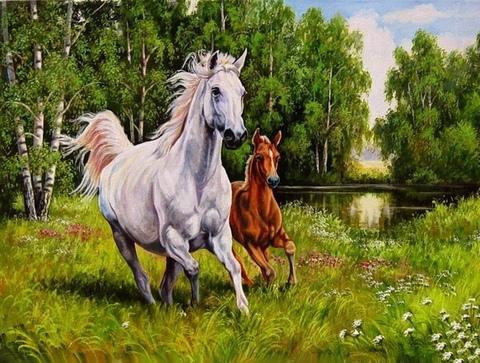 Алмазная Мозаика 20x30 Белая лошадь и жеребенок (арт. JS27393 )