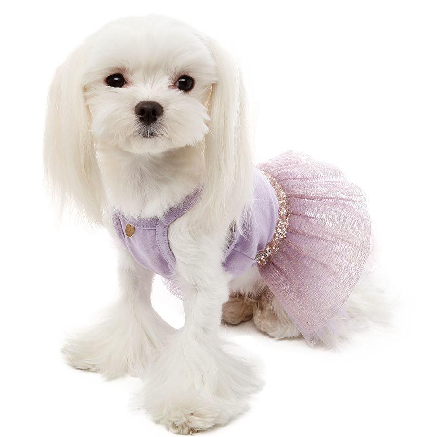 платье для собак купить в москве