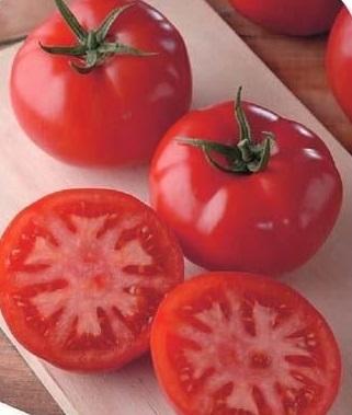 Томат Генерал F1 семена томата детерминантного (Sakata / Саката) ГЕНЕРАЛ_семена_овощей_оптом.jpg