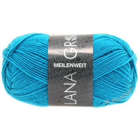 Lana Grossa Meilenweit Uni 50 (1366) купить