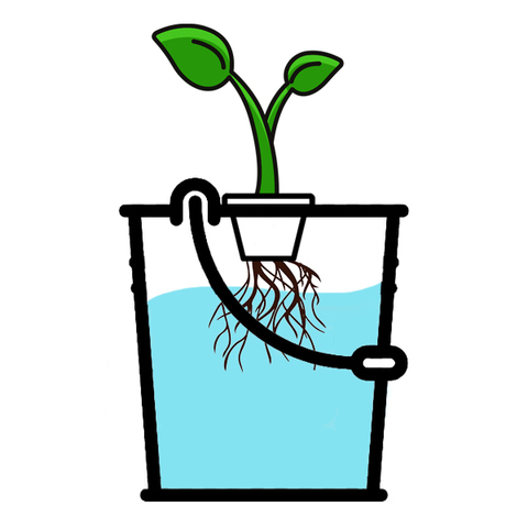 Комплекты для выращивания растений методом гидропоники под ключ