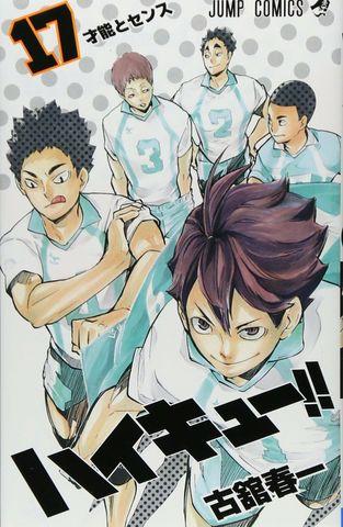 Haikyuu!! vol.17 (Japan Edition)
