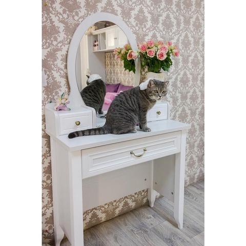 Зеркало с надстройкой к туалетному столу «Классика» 38 попугаев