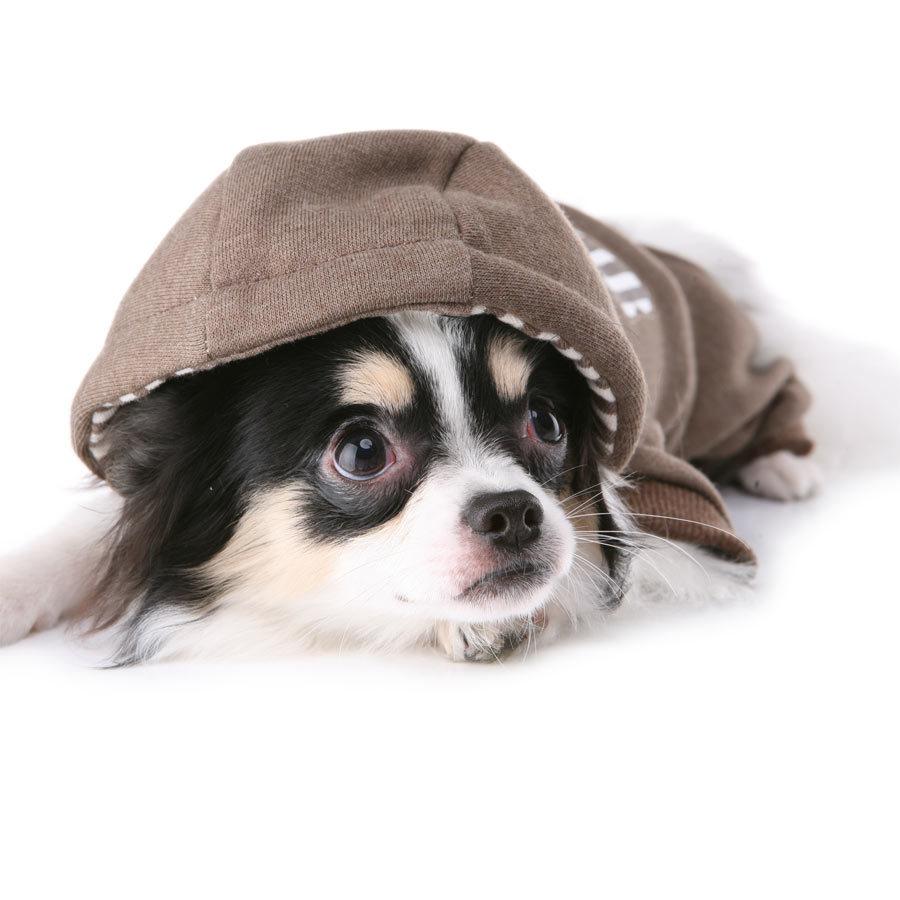 134 PA - Костюмы для собак