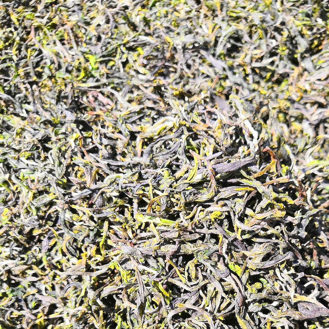 Краснодарский зеленый чай