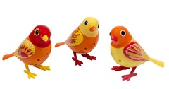 DigiBirds - Orange 3 Pack Set