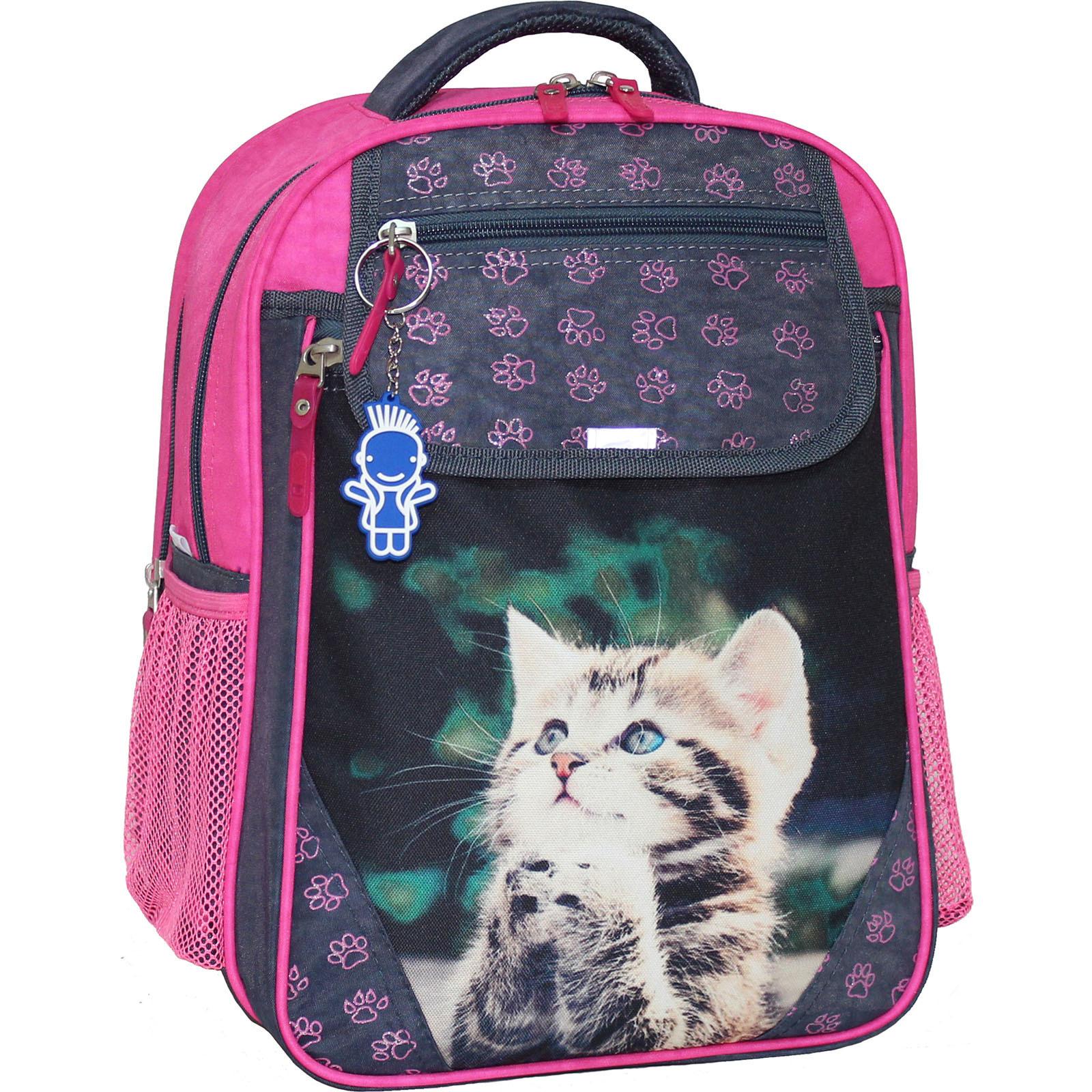 Школьные рюкзаки Рюкзак школьный Bagland Отличник 20 л. 321 сiрий 21 д (0058070) IMG_1672.JPG
