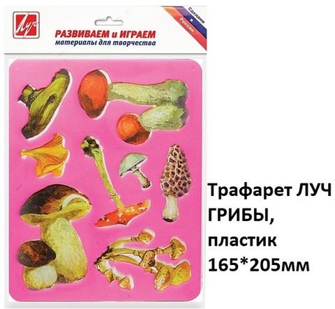 Трафарет 9С450-08 ЛУЧ ГРИБЫ