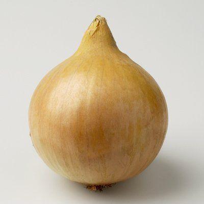 Репчатый Марко F1 семена лука репчатого (Hazera / Хазера) марко.jpg