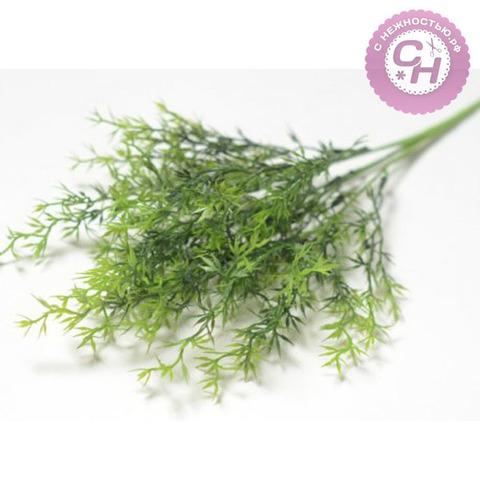 Искусственная зелень Аспарагус-колючка, букет 5 веток, 36 см.