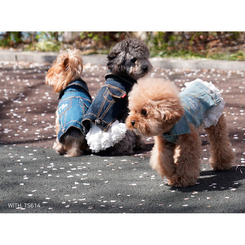 джинсовая одежда для собак