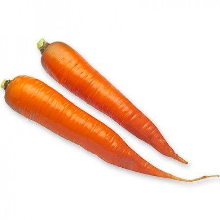 Флакке Каротан рз семена моркови флакке (Rijk Zwaan / Райк Цваан) КАРОТАН_РЗ__2_семена_овощей_оптом.jpg