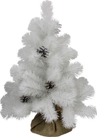 Сосна Beatrees White Crystal 60 см. в мешочке белая