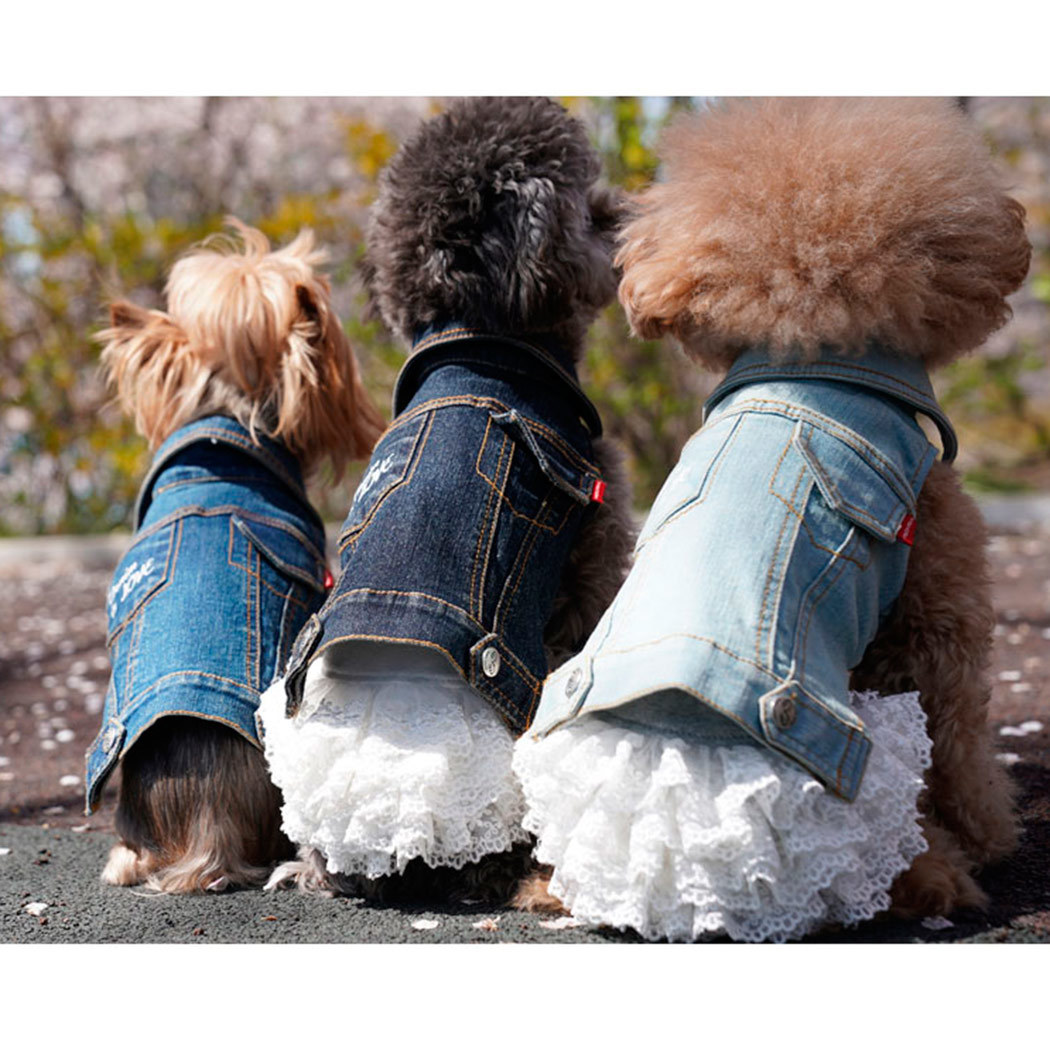 джинсовый жилет для собак