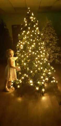 Елка Нормандия с лампами,фотография нашего независимого оценщика.
