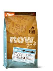 Беззерновой корм для взрослых кошек с чувствительным пищеварением, NOW FRESH, с форелью и лососем