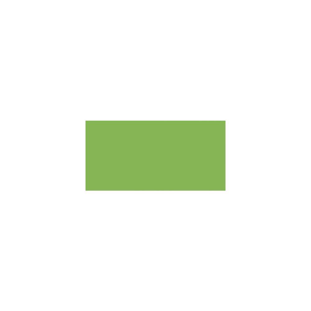 Маркер акварельный ZIG Clean Color Real Brush- штучно -Light Green - 041