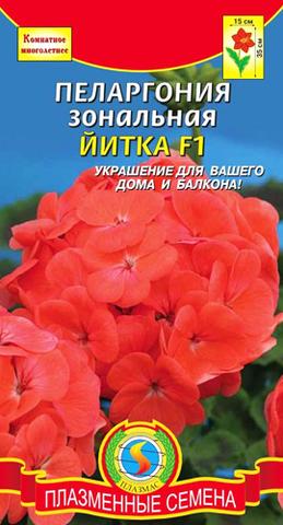 Семена Пеларгония Йитки F1 зональная, Мнг