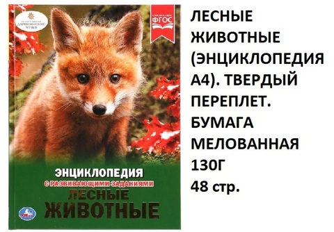 Книга Энциклопедия Лесные животные 02955-7