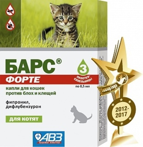 Барс Форте для котят