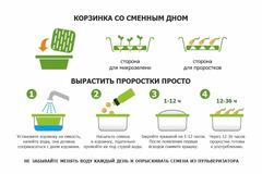 Набор  для проращивания: выращиватель микрозелени + проращиватель проростков, Здоровья клад