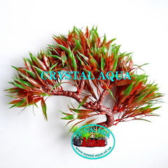 Растение Атман KA-166A