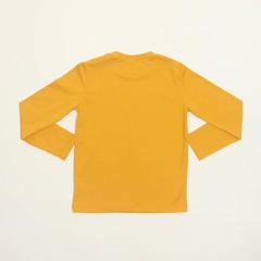 Детская мужская футболка WB E21K-93N101