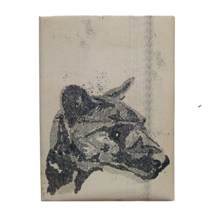 Сумчатый волк / обложка для паспорта