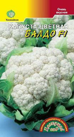 Семена Капуста цветная Балдо F1