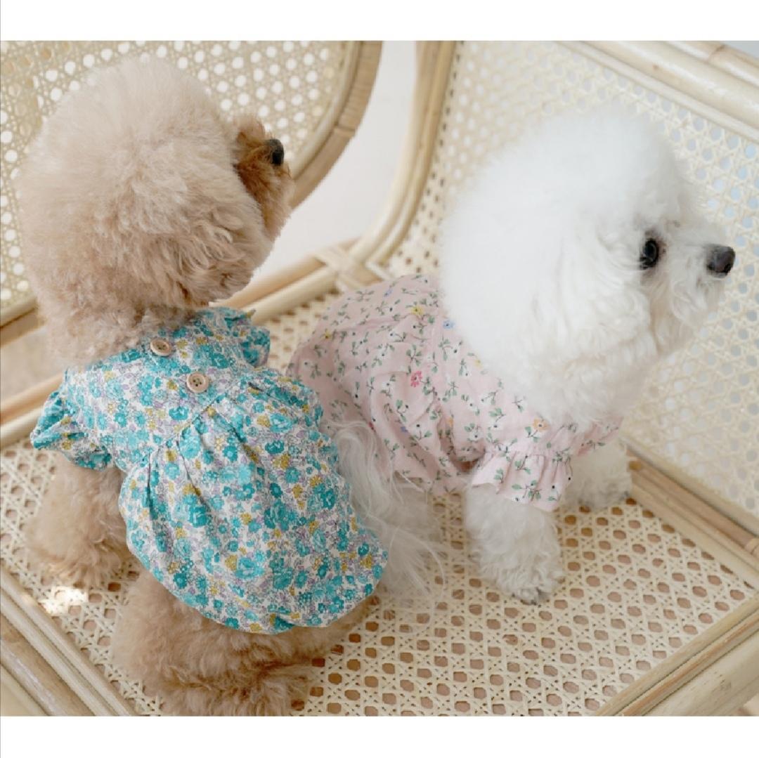 летние блузы для собак