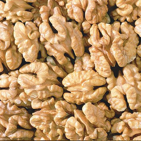 Грецкий орех Чилийский отборный
