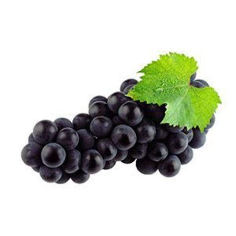 Vega Чёрный Виноград