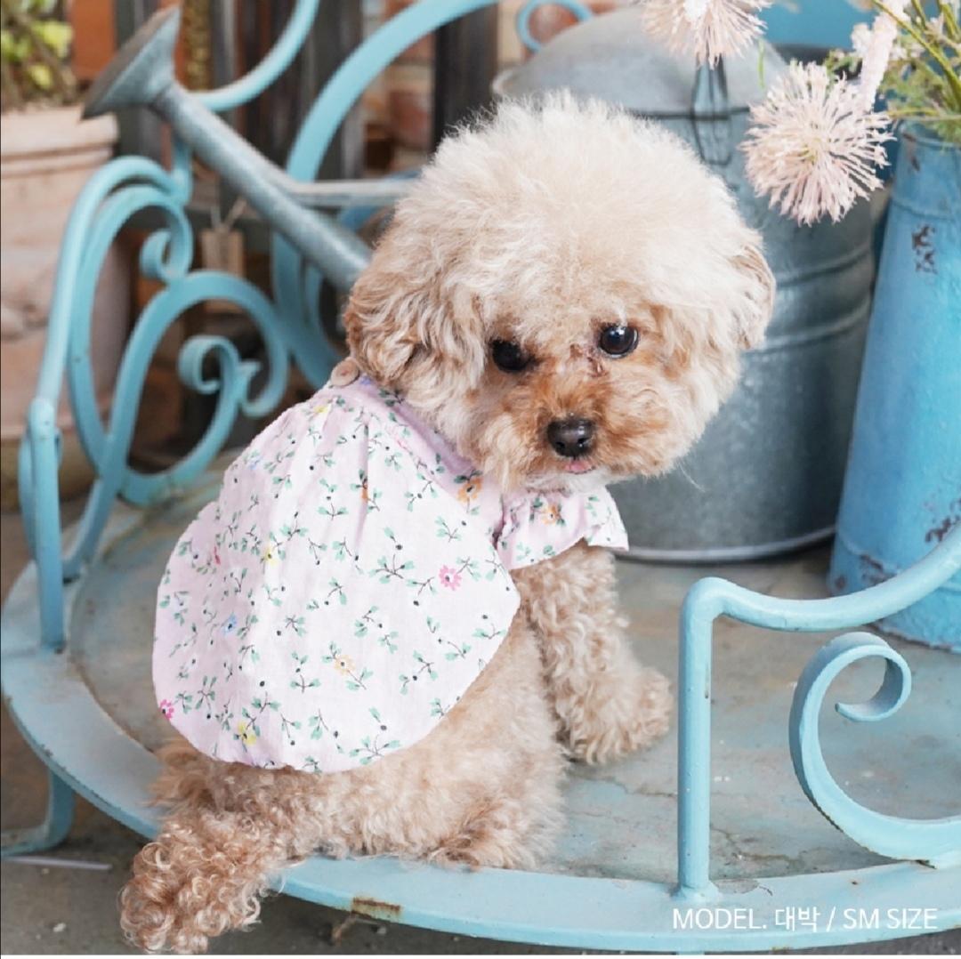 одежда для собак puppyangel купить