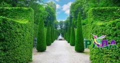 "Фотосетка ""Рада"" для декора забора ""Зеленая Аллея"" 158х300 см."